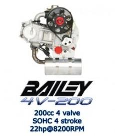 Bailey 4V